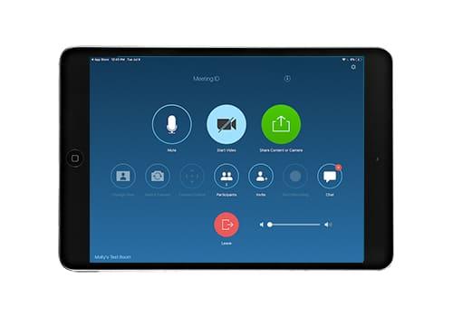 iPad Mini with Zoom Interface